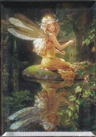 Faery Reflection magnet