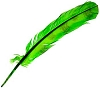 Green Man feather