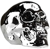 Silver Chrome Skull bank