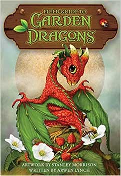 Field Guide to Garden Dragons by Morrison & Lynch