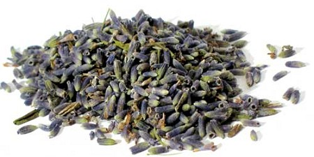 Bulk Lavender Flowers whole